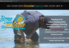 screenshot-brasdorcepi.ca-2016-12-26-08-48-41